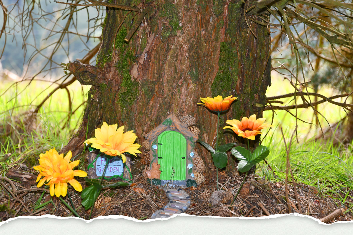 Fairy Door at Pine Forest Art Centre